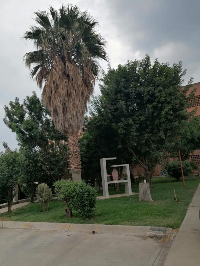 Renta de Departamento  en San Luis Potosi en FOVISSSTE