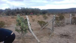 Venta de Terreno en GRANJAS DE SAN PEDRO